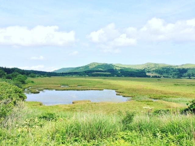 八島湿原2.JPG